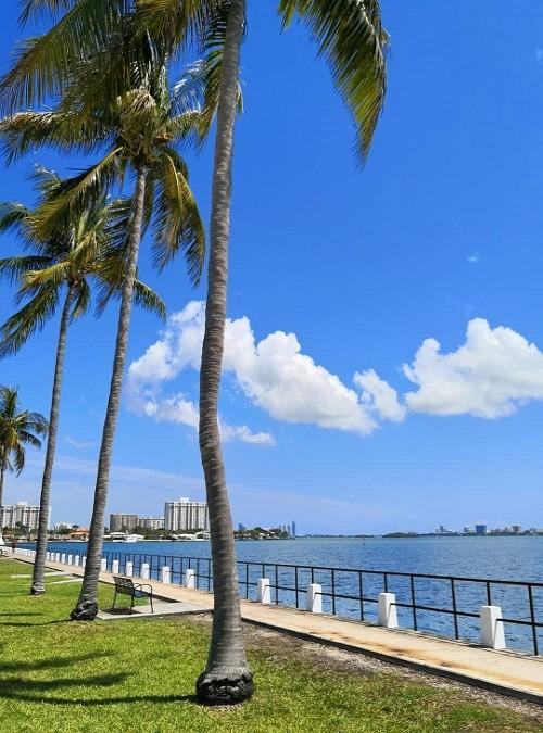 Miami Shores Bayfront Park Seawall